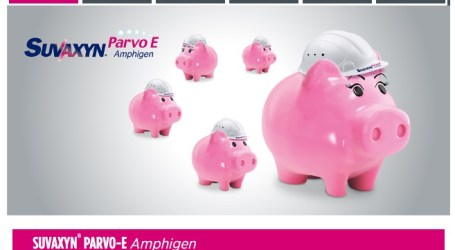 Todas las ventajas de Suvaxyn® Parvo-E Amphigen en su nueva web