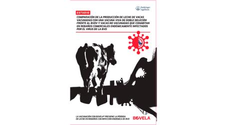 El nuevo estudio ADVANCE avala la seguridad de Bovela® y demuestra un aumento en la producción de leche en el ganado bovino