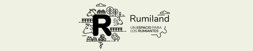 rumiland-boehringer