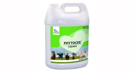 PHYTOCEE, ahora también en presentación líquida