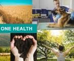El III Health Innovation Forum de MSD reunirá a profesionales de la salud humana, animal y ambiental con un enfoque One Health