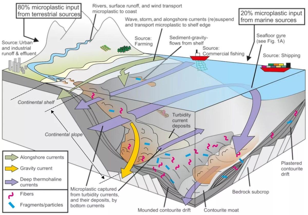 Vertedero de plástico en el fondo marino