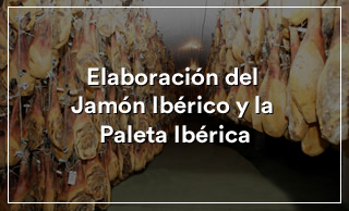 Elaboración jamón ibérico