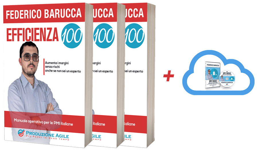 Libro EFFICIENZA100 (x3) + Cloud