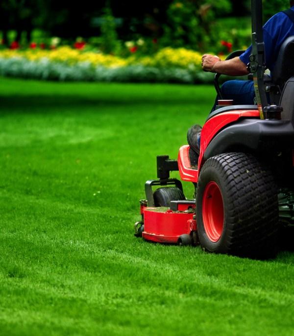 pro edge lawn care llc