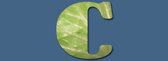 C is for Cabbage