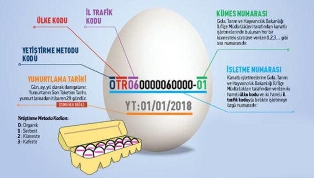 Yumurta Üzerindeki Numaraların (Sayıların) Anlamı