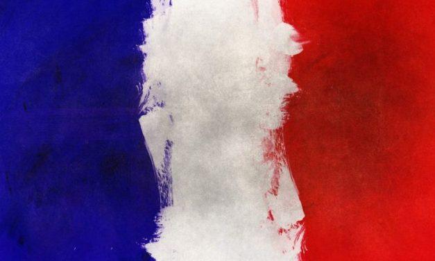 Francophonie – La langue française de plus en plus écartée à l'ONU