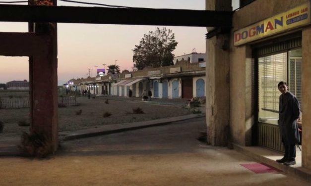Interview. Matteo Garrone et son film «Dogman» : bonté, cruauté et torture