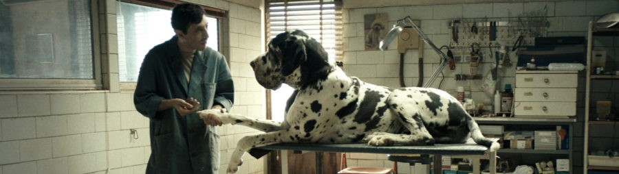 Matteo Garrone, Dogman, avec Marcello Fonte (crédits : Greta De Lazzaris)