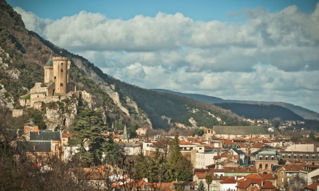L'Estive, Scène nationale de Foix et de l'Ariège, recrute son directeur (h/f)