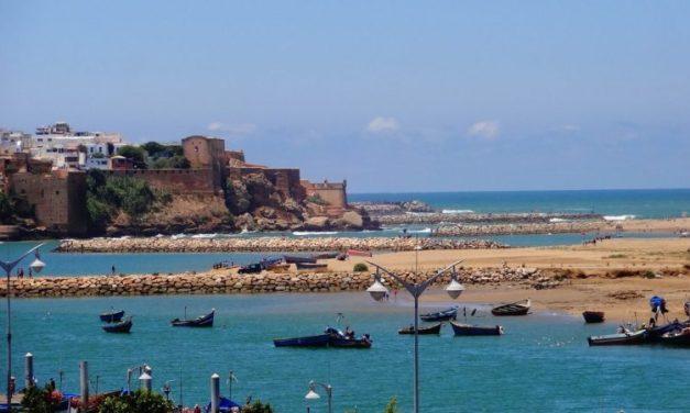 Rabat – La Délégation Wallonie-Bruxelles recrute un stagiaire pour la coordination des activités culturelles