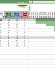 Project manager gantt chart screenshot also professionalexcel rh