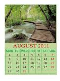 Daily Calendar Template