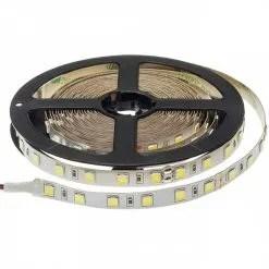 Professione Led - STRISCIA LED 5 MT SMD5054 300LED IP20 5.600 Lm DC 24V}