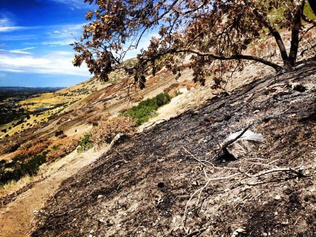 7 September 2013 Flag Rock burn
