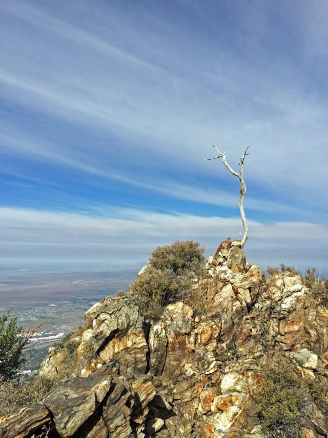 Old North to Bountiful Peak to Parrish (9)