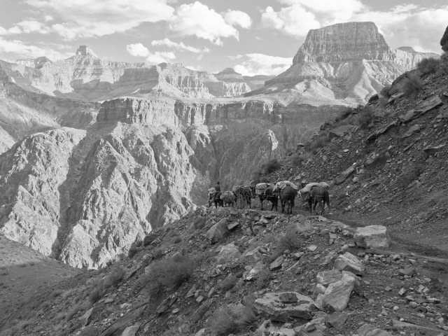 I like this one in black/white. The sight of the mule train made me feel like the 19th century.