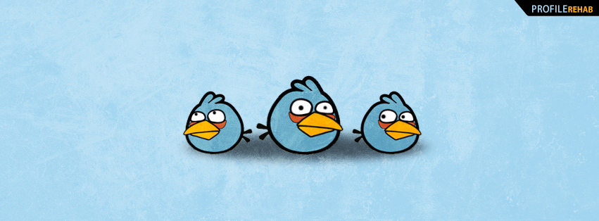 Free Cute Fall Wallpaper Angry Birds Facebook Cover