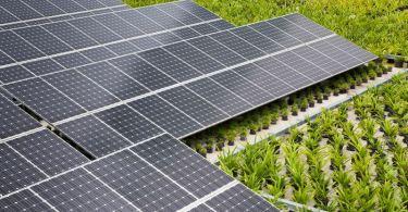 ηλιακά πάνελ Ινδία