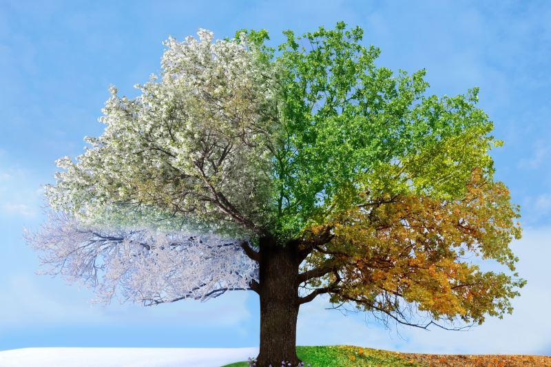 Συνέδριο Κλιματική Αλλαγή, Η Αυτοδιοίκηση και η Θεσσαλία Μπροστά στην Παγκόσμια Πρόκληση