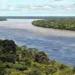 Importance of the Amazon Rainforest