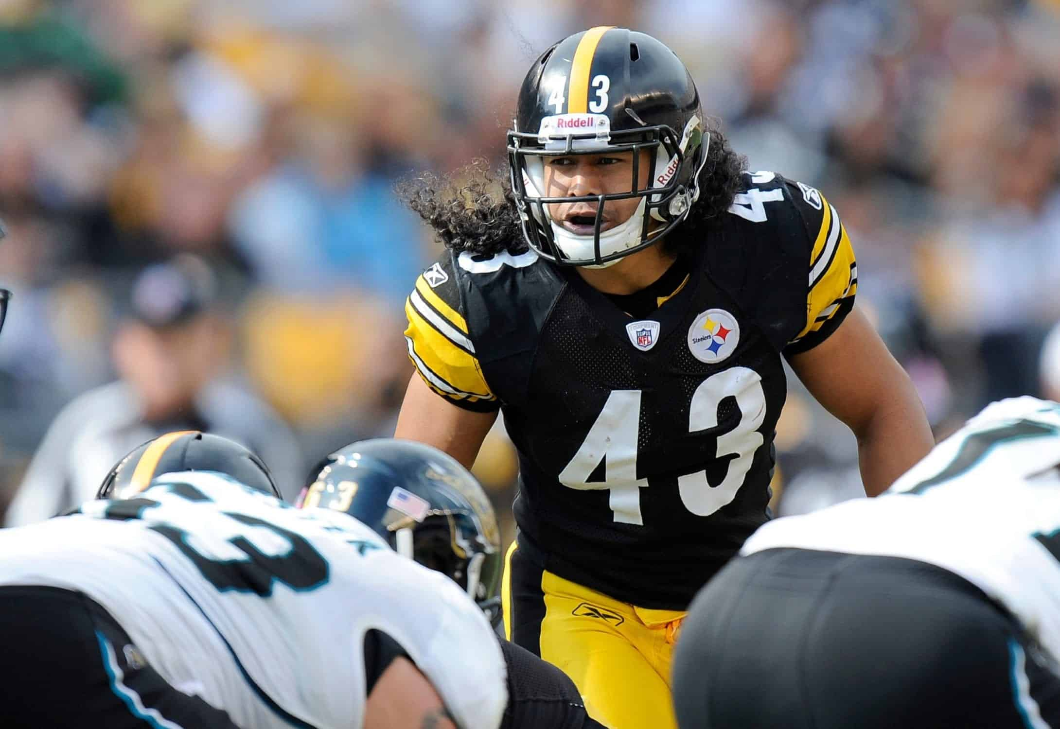 Troy Polamalu headlines the Pro Football Hall of Fame Class of 2020
