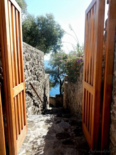 castello aragonese ischia ulivi