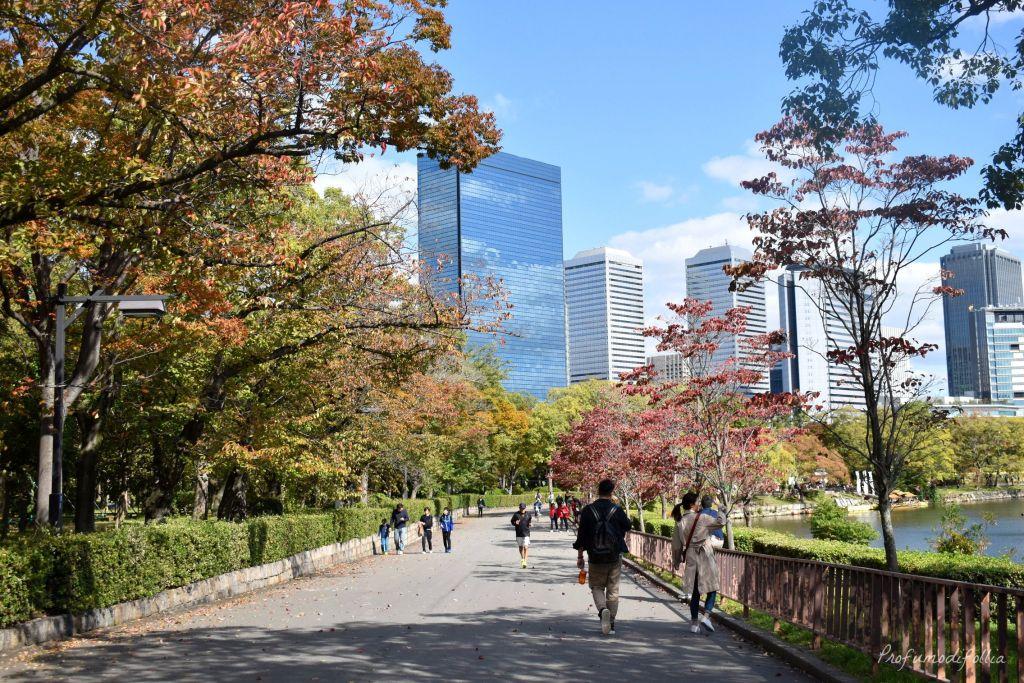 Parco del Castello di Osaka, sentiero fra gli alberi [Una settimana in Giappone: Osaka]