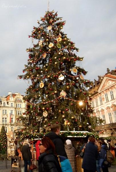 24 ore a Praga albero di natale
