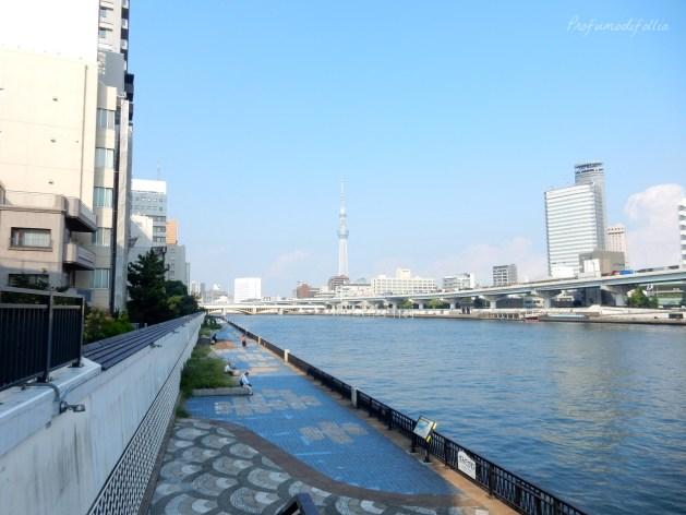 diario di viaggio Giappone