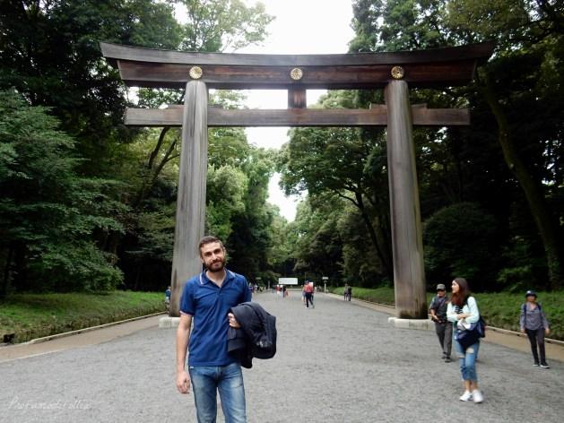 tempio meiji jingu torii
