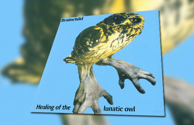 Brainchild - Healing of the Lunatic Owl