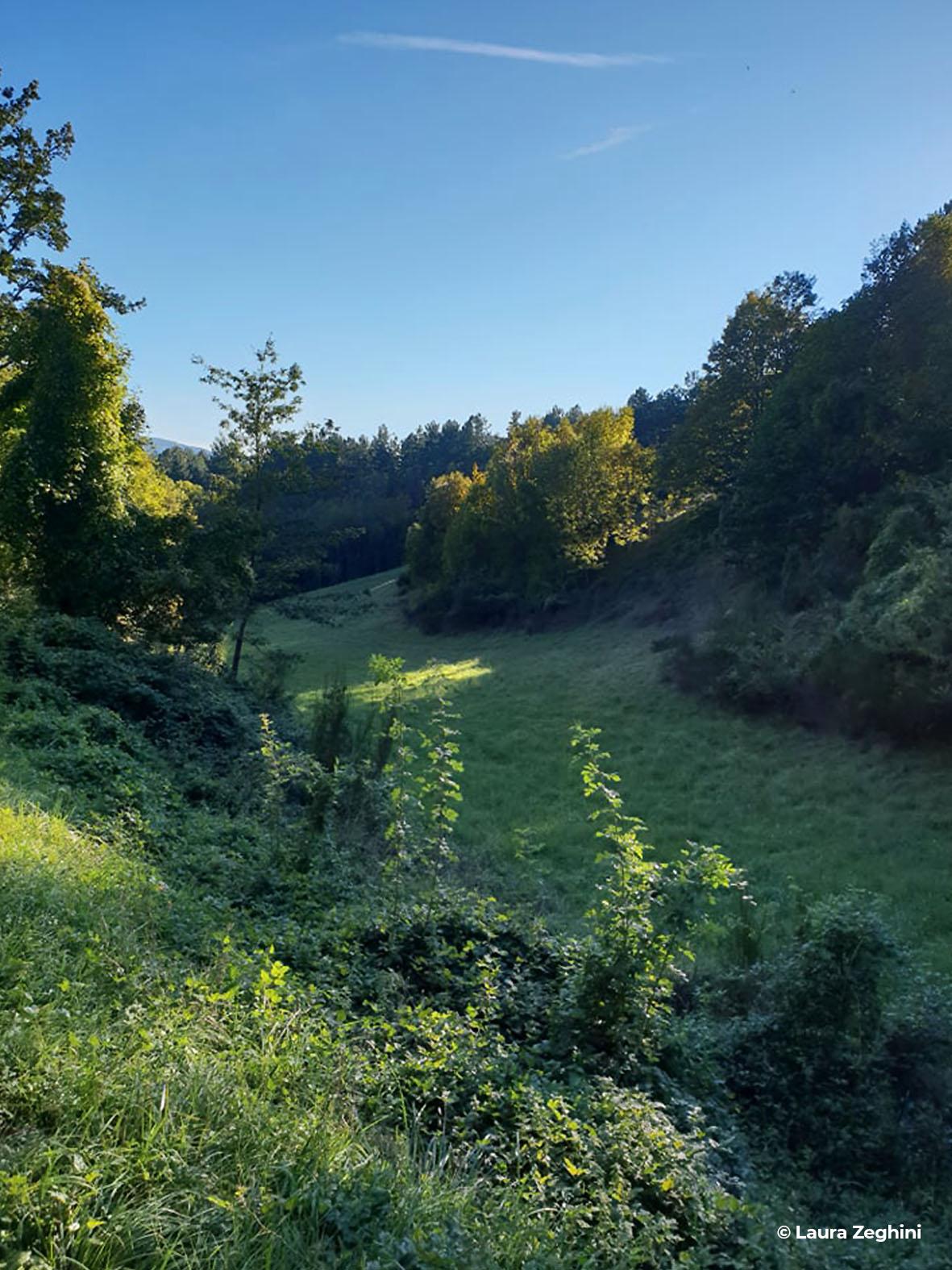 Chiusi della Verna - Progettoidea chiusi della verna (©laura zeghini)