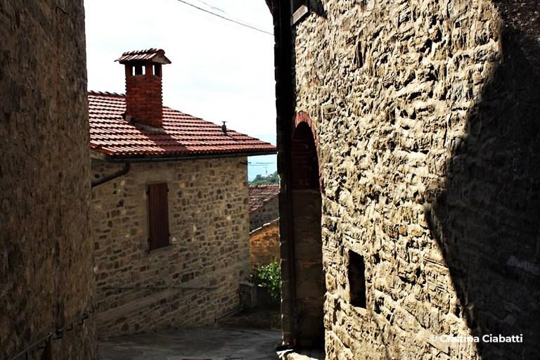 Loc. Dama - Progettoidea chiusi della verna (©cristina ciabatti)