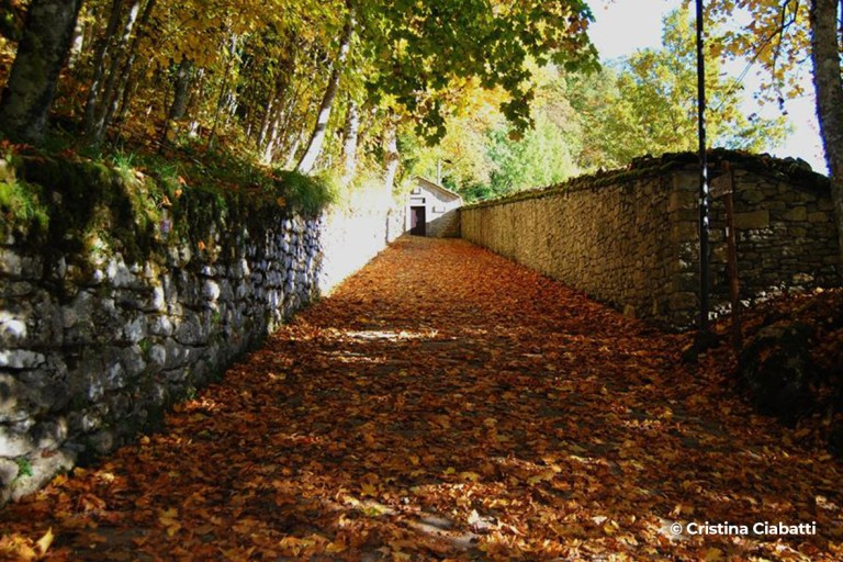 Santuario della Verna - Progettoideal chiusi della verna (©cristina ciabatti)9