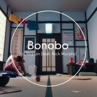 Musikvideo: Bonobo - No Reason (feat. Nick Murphy)