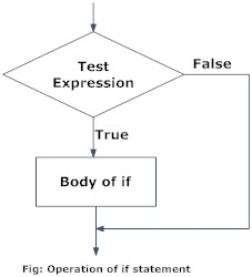 Flowchart of if statement in Python programming