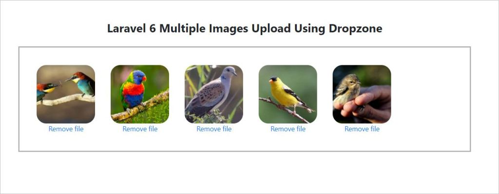 Uploaded images in dropzone