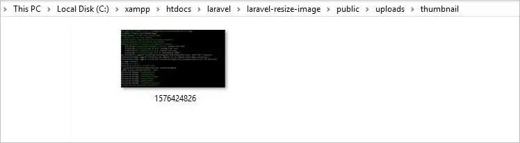 Resized Image in Laravel 6