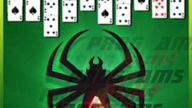 Classic Spider Solitaire