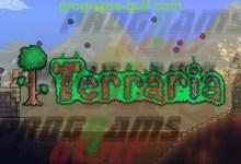 Photo of تحميل لعبة Terraria للكمبيوتر