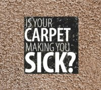 How To Prevent Your Carpet From Making You Sick ...