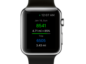 StepWise Apple Watch Pedometer