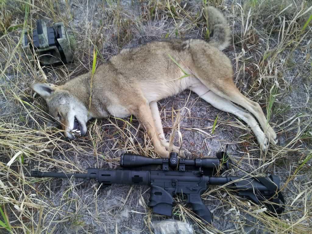 Primos Alpha Dogg Electronic Predator Call - proHuntingHacks