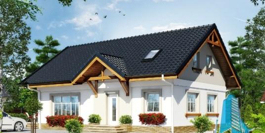 Proiect de casa cu parter, mansarda -100596