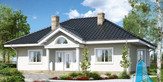 Proiect de casa cu parter, mansarda -100694