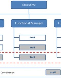 also organizational structure types for project managers rh management skills