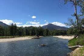 The Bitterroot River, 5 min walk off ABC acres