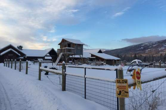 A Snowy Playground